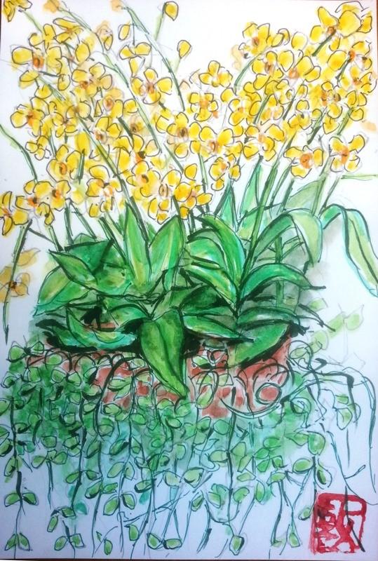 蘭の鉢植えを描いた手紙